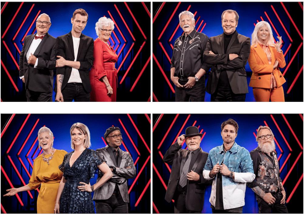 Deze deelnemers staan in de finale van The Voice Senior 2020 in België